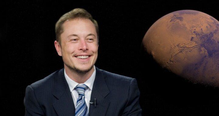 """Dogecoin, Elon Musk ne ipotizza una crescita esponenziale: """"Diventerà la valuta del pianeta"""""""